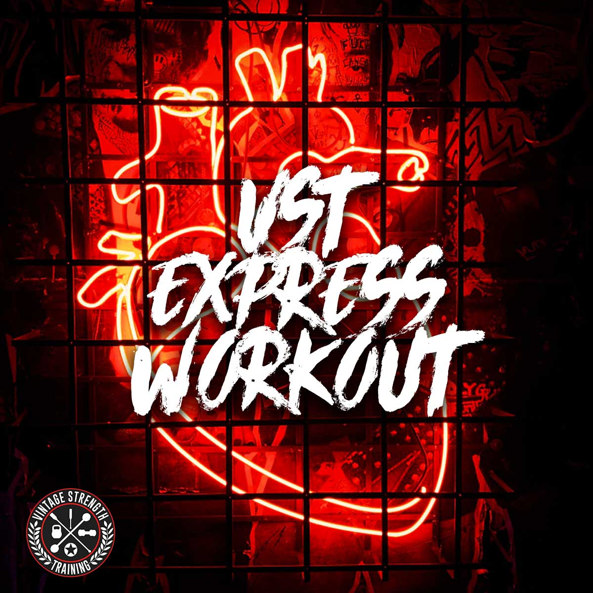 VST Express Workout